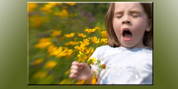 katar sienny alergia na pyłki