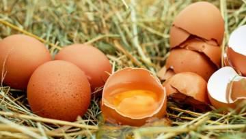 Wielkanocna kosmetyka – łatwe naturalne maseczki z jajkami
