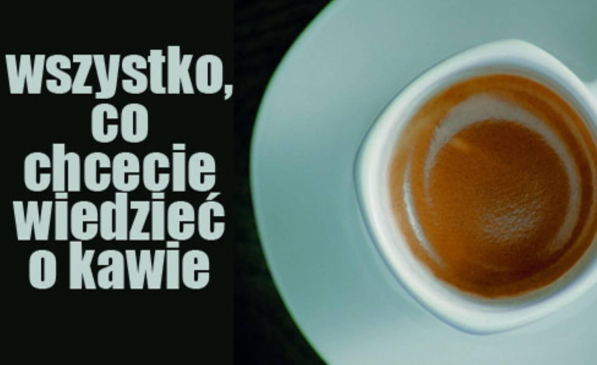 Segafredo_Zanetti_Poland_Filizanka_kawy