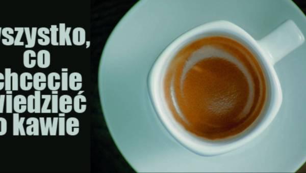 Wszystko, co chcecie wiedzieć o kawie