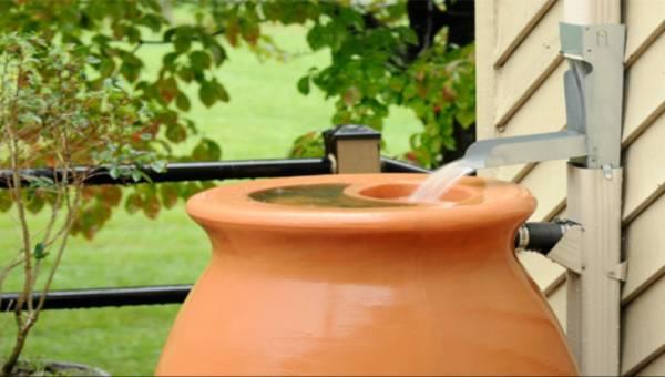 Oszczędzaj wodę – Zbieraj deszczówkę