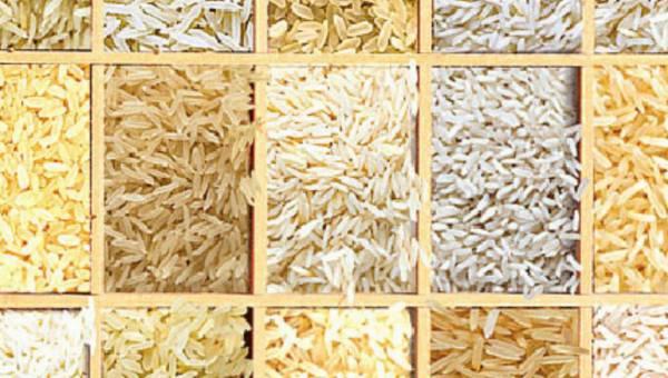 Dookoła świata z ziarenkiem ryżu