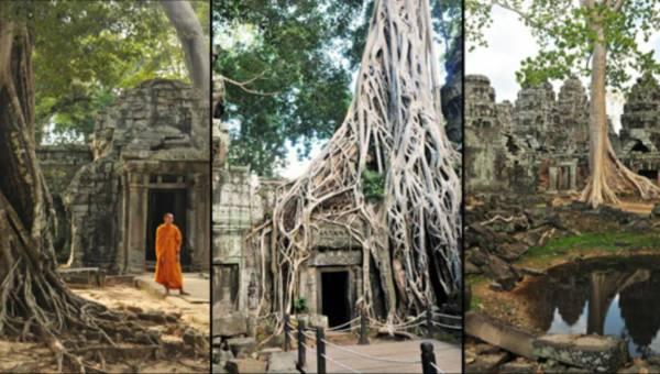 Angkor Wat –  jak się dostać,co oglądać. Podróż w czasie.