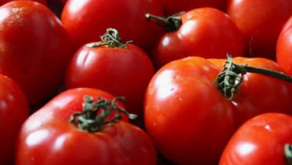 Pora na pomidora – sięgaj po zdrowie!