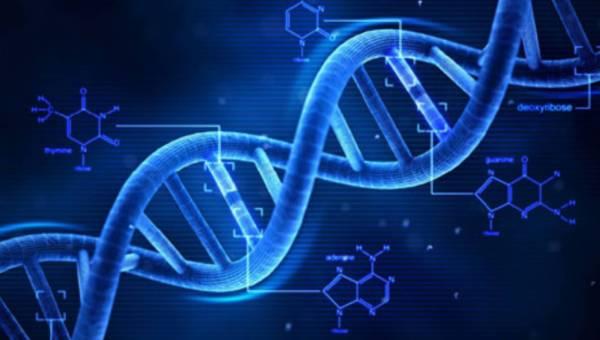 Testy genetyczne mozesz wykonac w domu
