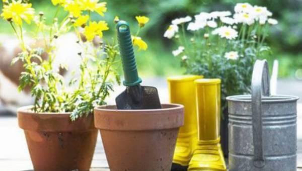 Porządki po zimie, czyli nowy sezon w ogrodzie – 5 rad, jak przygotować ogród na przyjście wiosny
