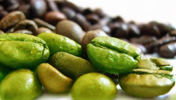 Zielona kawa – top składnik wspomagający odchudzanie
