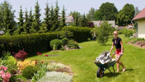 Prace ogrodowe w maju