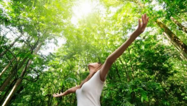 Wellness – czyli jak żyć w zgodzie z własną naturą