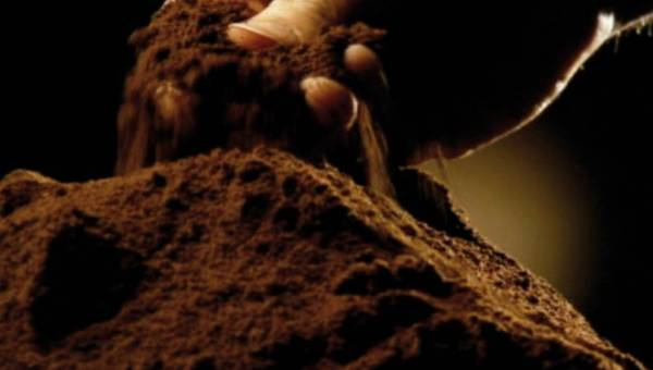 Czy alternatywą dla małej czarnej może być wersja bezkofeinowa?