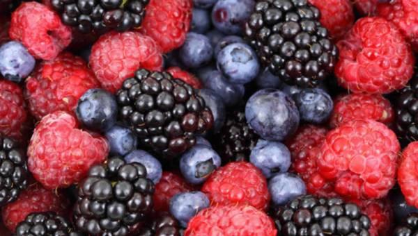 Letnie owoce leśne – dlaczego warto je jeść?