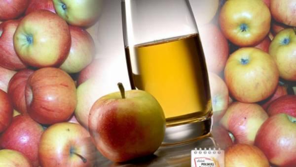 25 sierpień – Dzień polskiej żywności: zoom na polskie jabłka