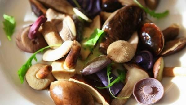 Dietetyk odpowiada na pytanie: Czy warto jeść grzyby?