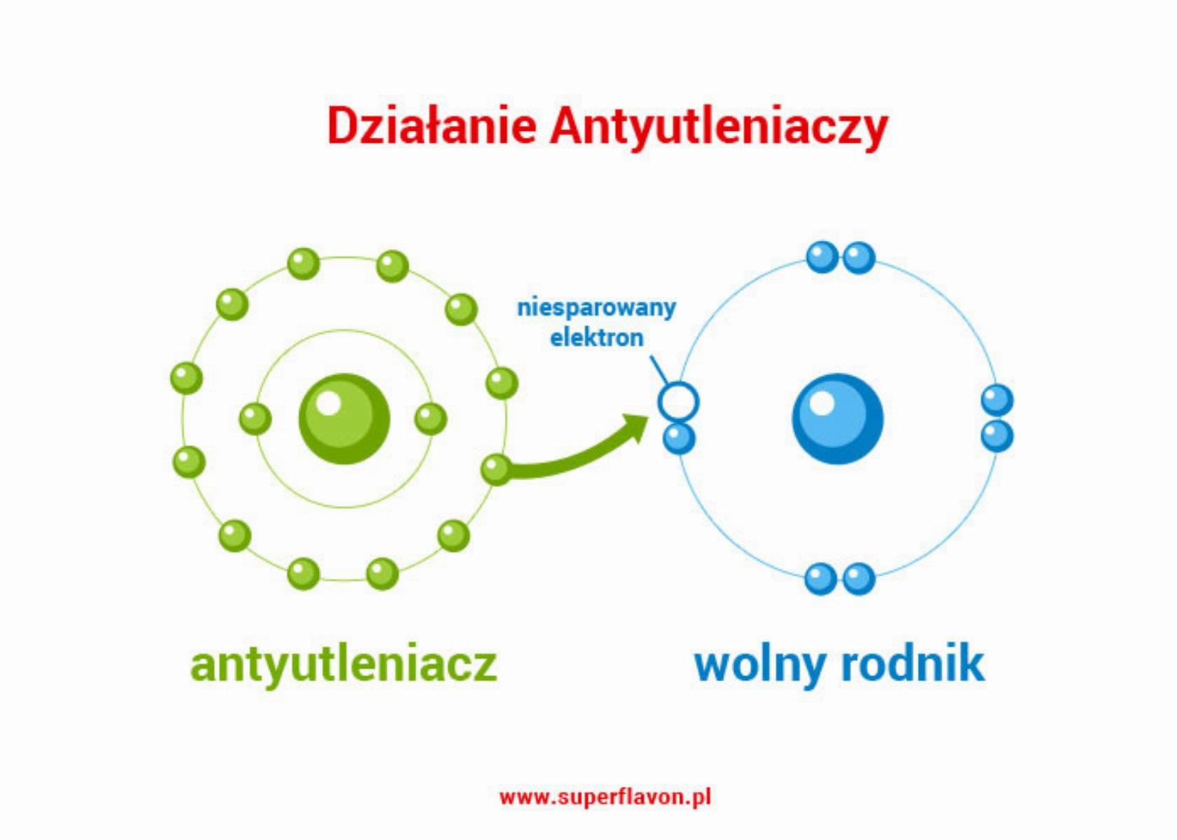 dzialanie-antyutleniaczy