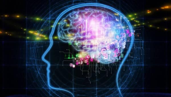 Jak polepszyć pracę mózgu?