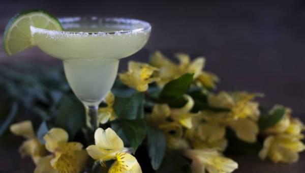 Meksykańska tequila – udaj się jej szlakiem