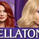 wellaton 2 w 1