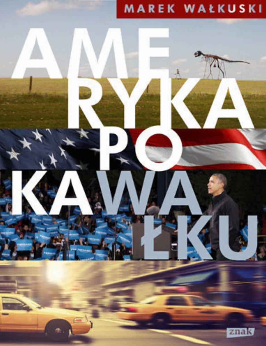 ameryka-po-kawalku-b-iext27412498