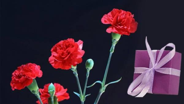 Pomysły na prezenty na Dzień Kobiet