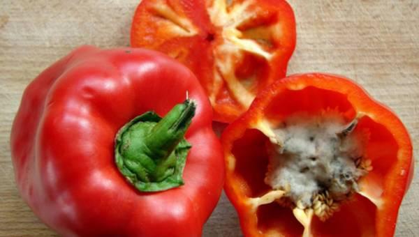 Zatrucie pokarmowe – jak się przed nim ustrzec?