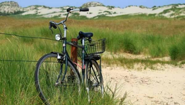 Jak wygodnie i bezpiecznie transportować rowery?