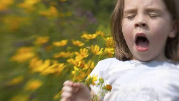 Co powoduje alergię i jak z nią żyć?