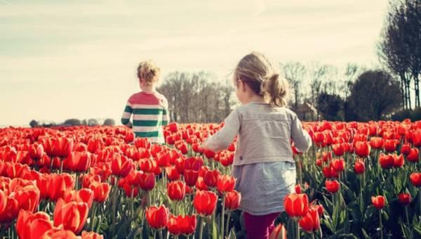 Rozwój trzylatka – jak poradzić sobie z jego wychowaniem?