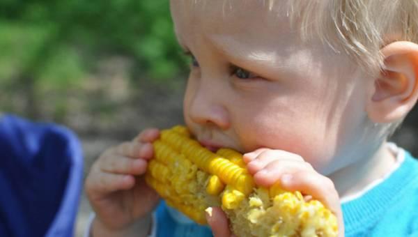 Letnie przepisy na dania z owocami i warzywami dla najmłodszych