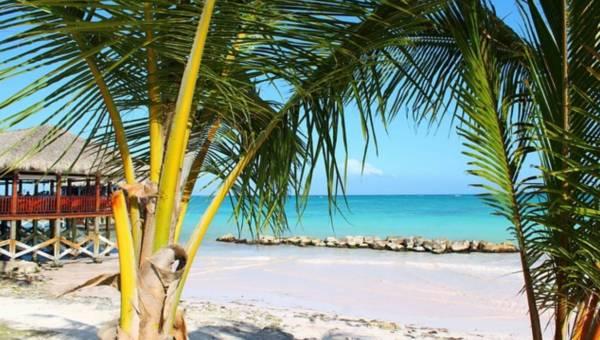 Co robić, by podróżować i nie zachorować na choroby tropikalne