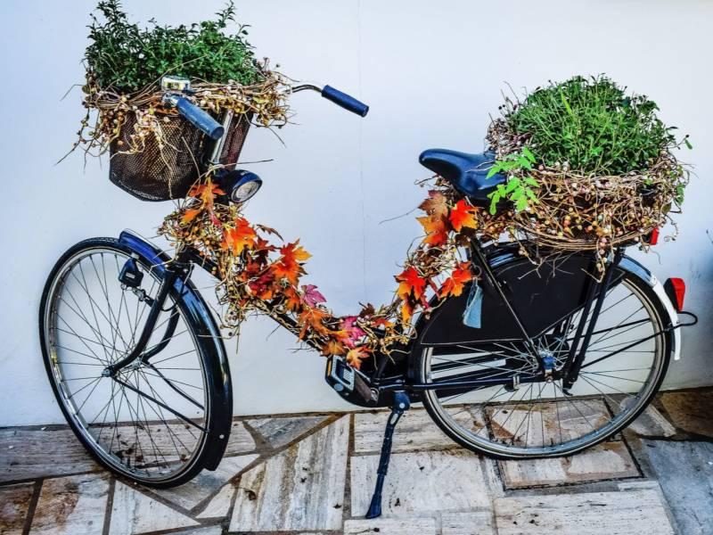 stary rower przystrojony na jesień