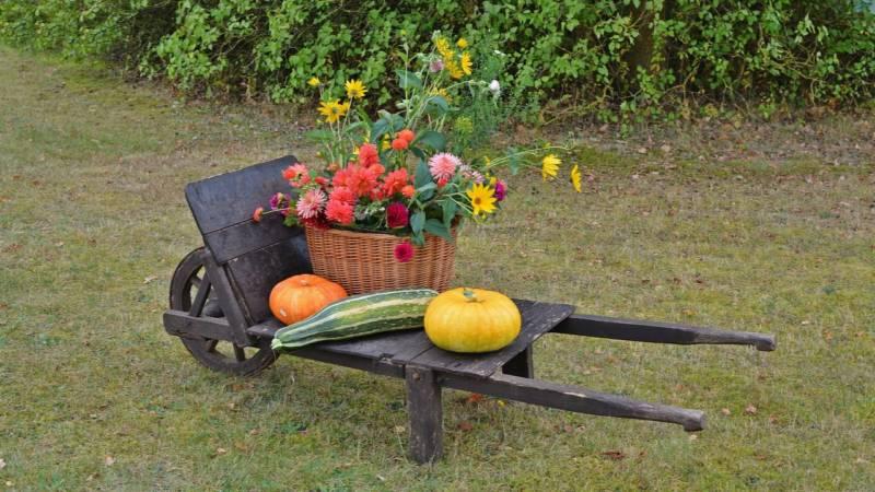 dekoracje na jesień na zewnątrz