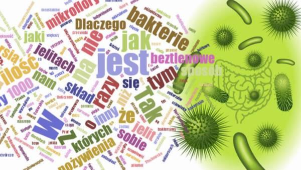 Jak to się dzieje, że mamy w sobie bakterie chorobotwórcze i nie chorujemy na rozstrój jelit?