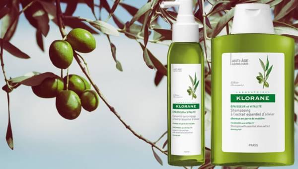 Kosmetyki KLORANE z wyciągiem z drzewa oliwnego