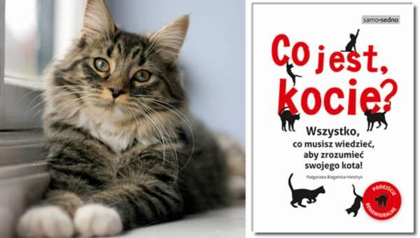 """""""Co jest, kocie?"""", czyli  wszystko, co musisz wiedzieć, aby zrozumieć swojego kota"""