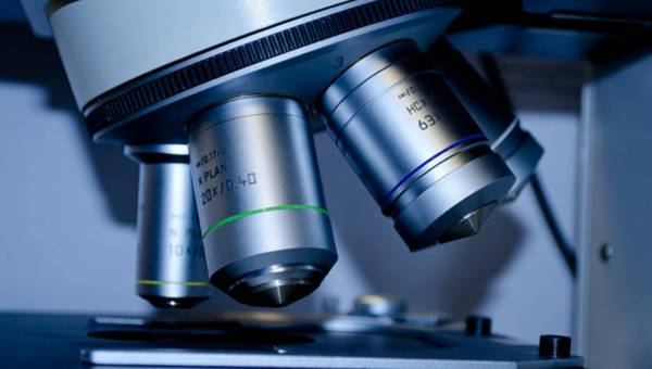 Talent zapisany w genach – Czego możemy się dowiedzieć za pomocą badań genetycznych?