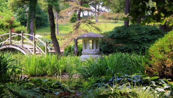Inspiracje: Pomysły na dekoracje do ogrodu