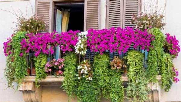 Sposoby na najpiękniejszy balkon i taras!
