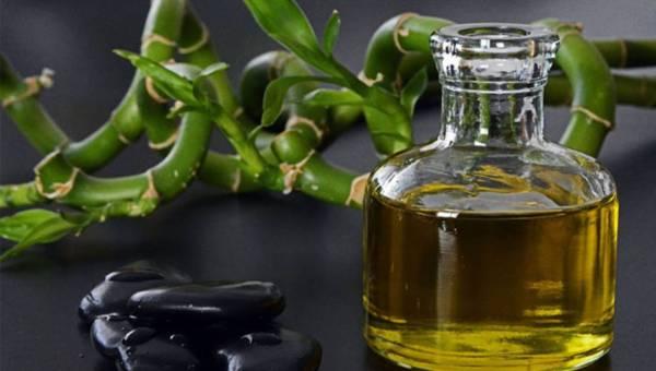 Olej jojoba i jego możliwości w pielęgnacji skóry i włosów!