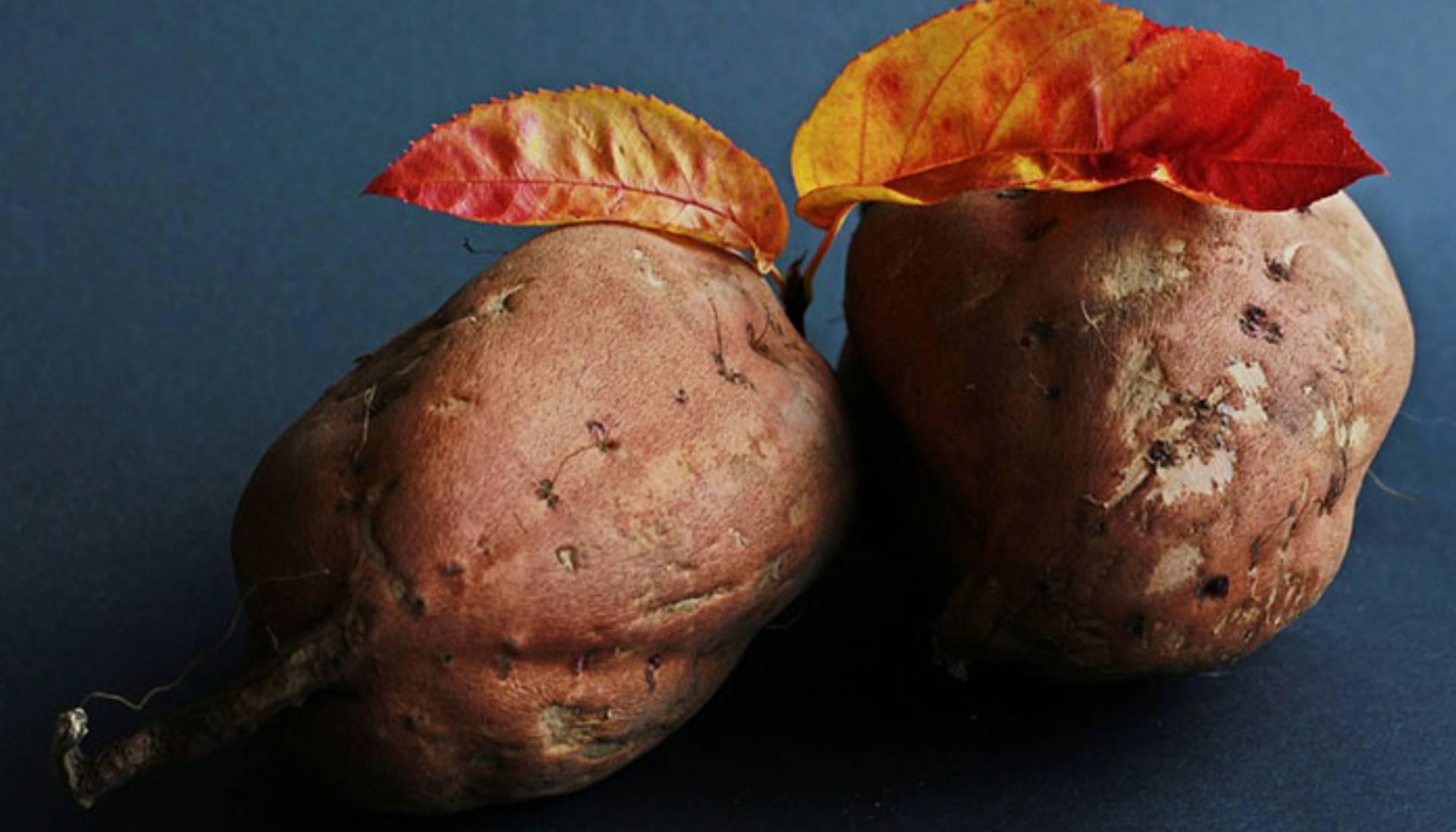 sweet-potato-534874_960_720