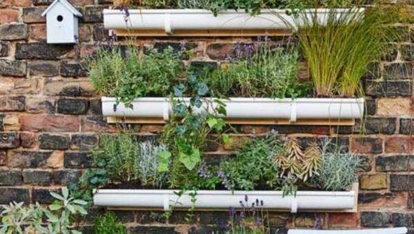 Zrób to sama lub … z męską pomocą: Pionowy ogród na Twojej ścianie!