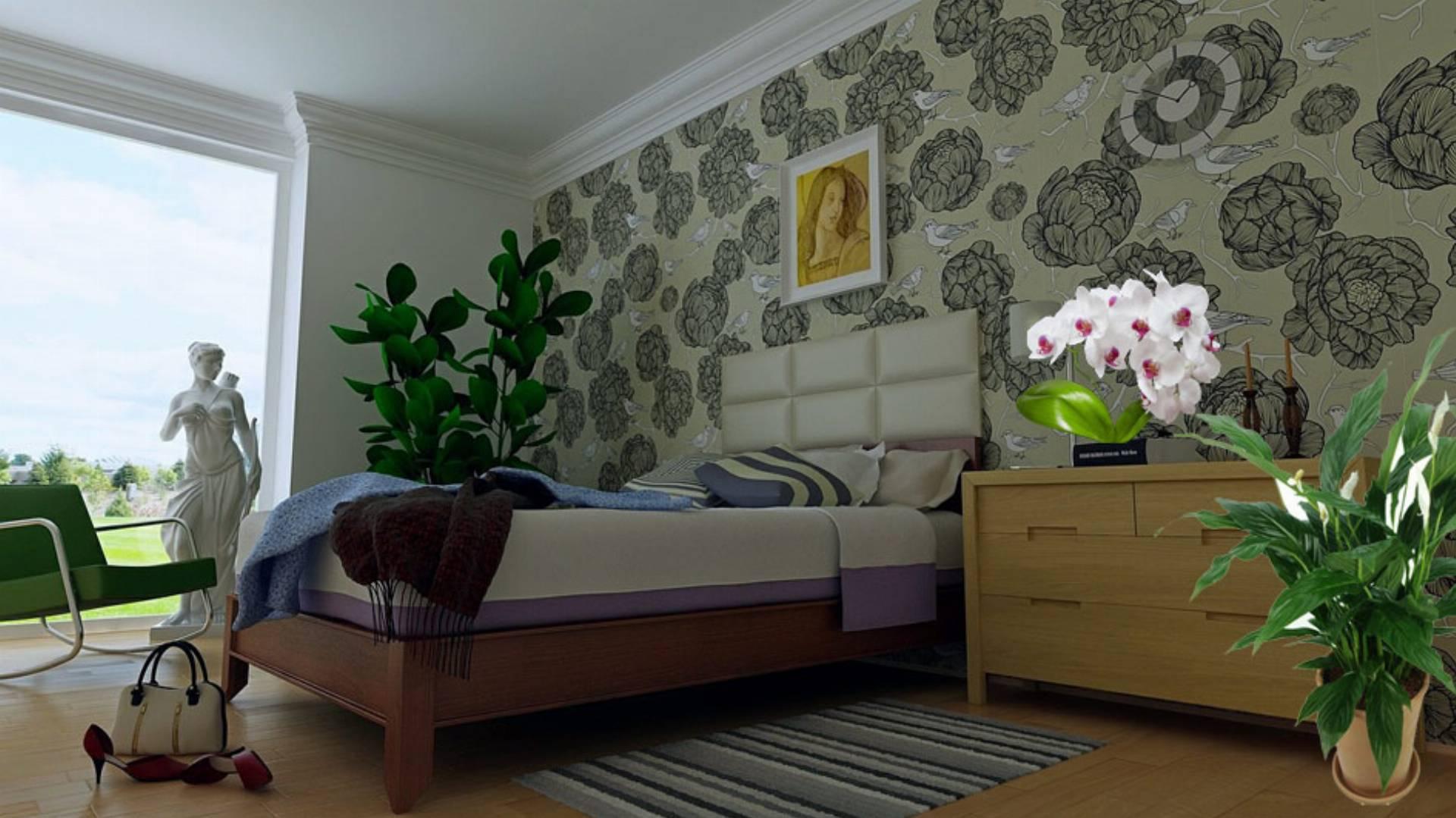 Najlepsze Kwiaty Do Sypialni Ktore Produkuja Tlen W Nocy Kobietamag Pl