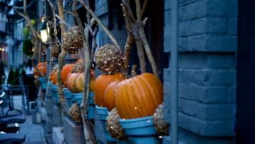 Proste i pomysłowe dekoracje na Halloween