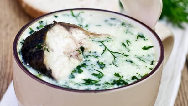 Pożywna biała zupa rybna na jesień