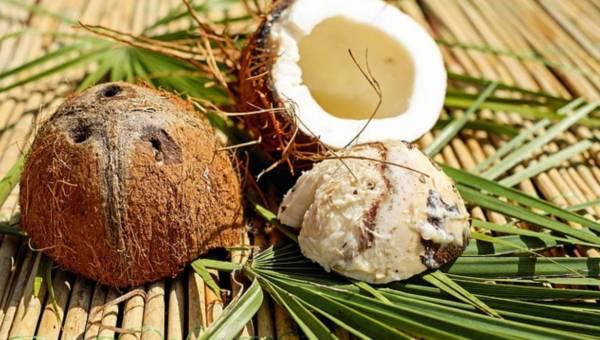 Wszechstronny olej kokosowy – idealny dla kosmetycznych minimalistek i nie tylko