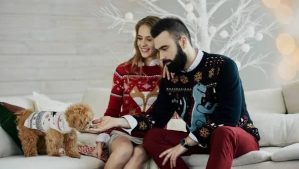 Świąteczne sweterki Medicine dla czworonogów i ich właścicieli (w szczytnym celu!)