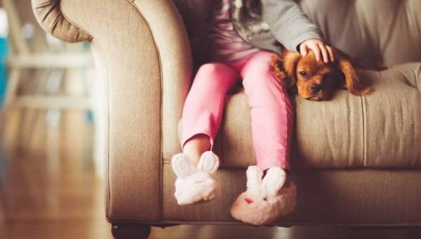 Wyprawka dla psa – co przygotować, by stworzyć psu ciepły i bezpieczny dom?