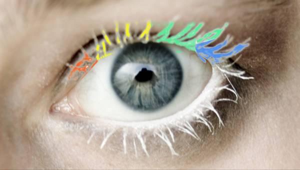 Kosmetyczny prosty trik: jak zrobić kolorowy tusz do rzęs w domu