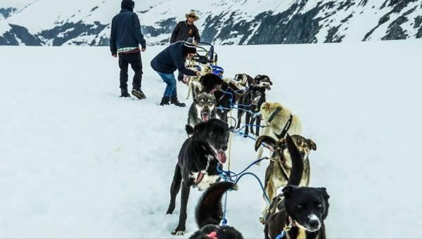 Ukigassen, Snowga, Skijoring – czy znasz te sporty zimowe?