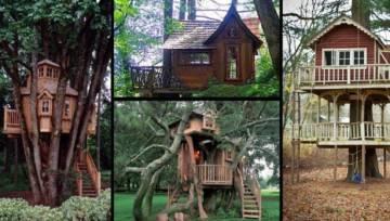 Zobacz niezwykłe domki na drzewach z całego świata i przenieś się do krainy dzieciństwa!