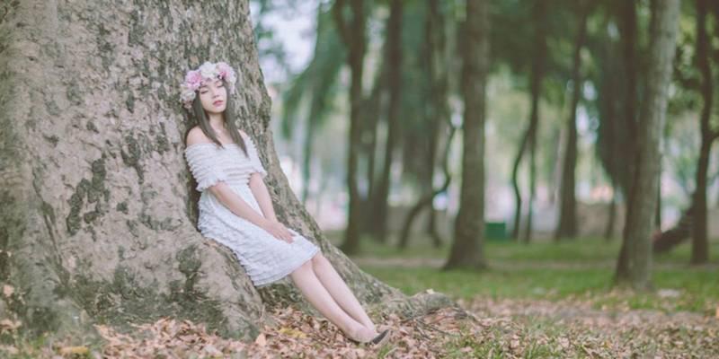 Drzewa, które leczą ciało i duszę